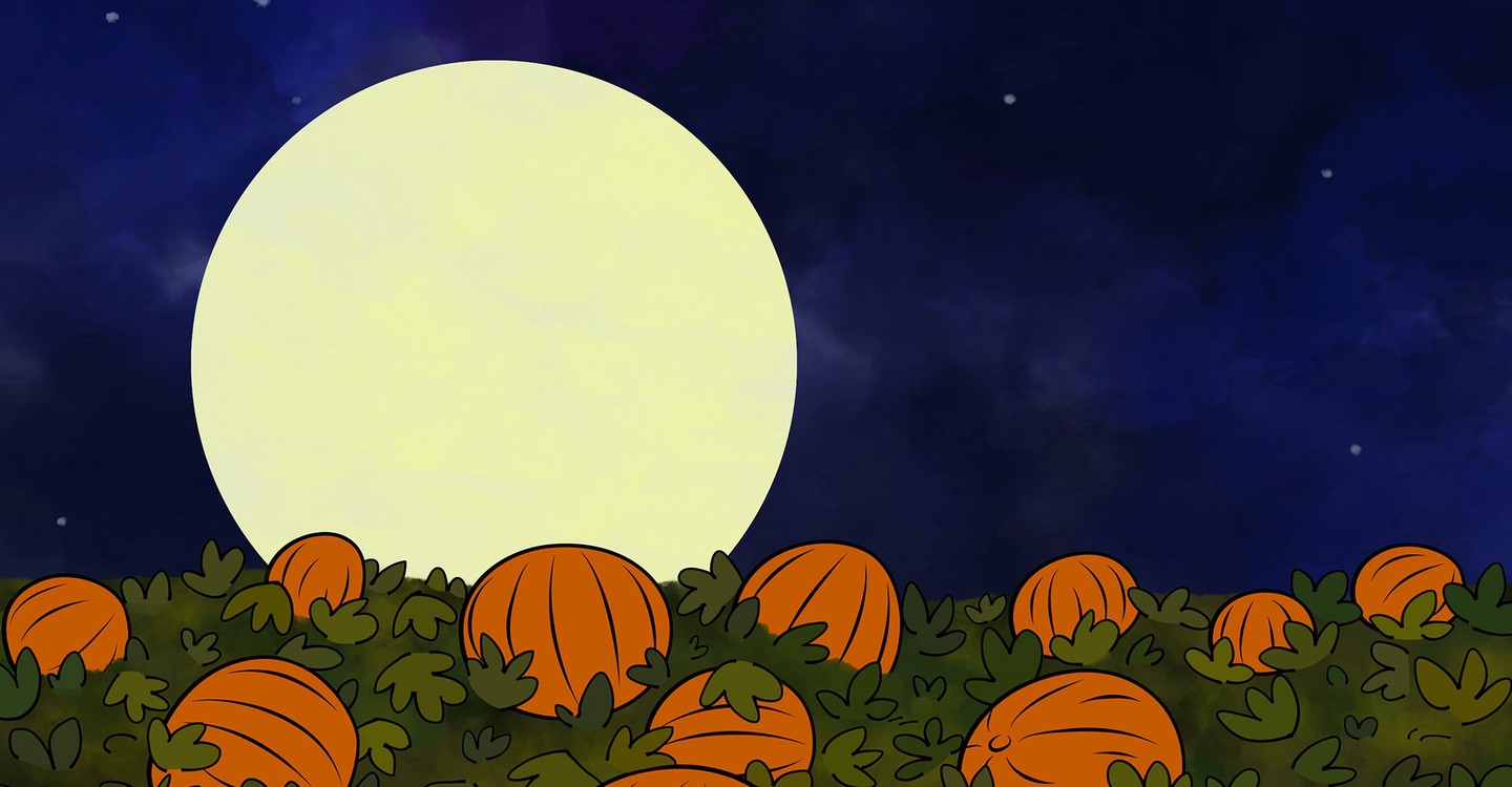 It's The Great Pumpkin Charlie Brown Quotes Prepossessing It's The Great Pumpkin Charlie Brown  Streaming