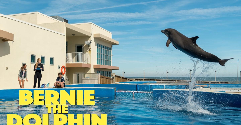 Bernie, o Golfinho - Amazon Prime Video