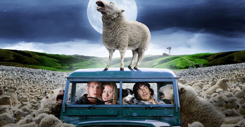 Black Sheep backdrop 1