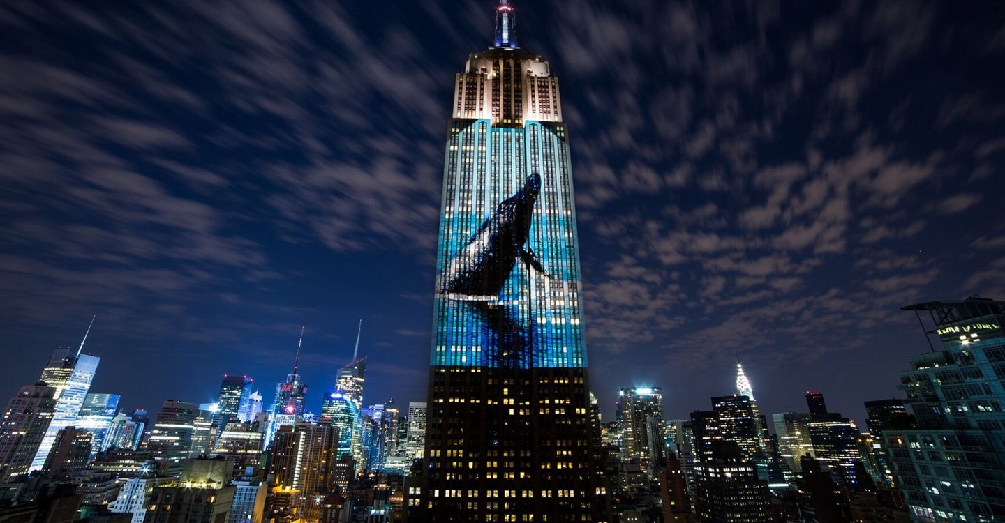 Racing Extinction backdrop 1