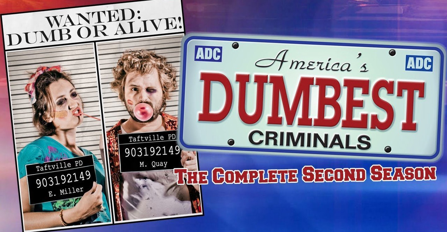 America's Dumbest Criminals backdrop 1