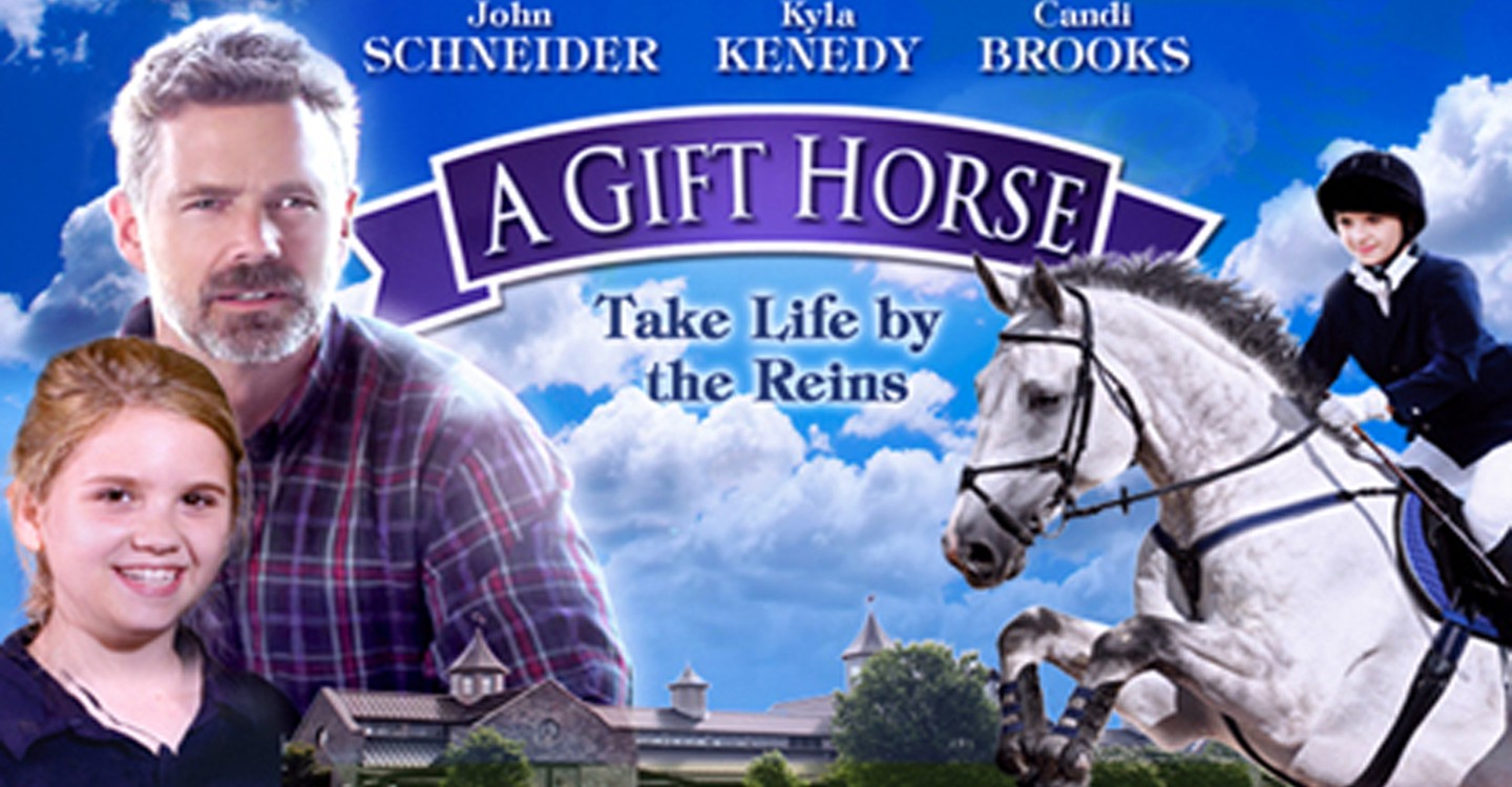 A gift horse movie where to watch streaming online a gift horse backdrop 1 negle Images