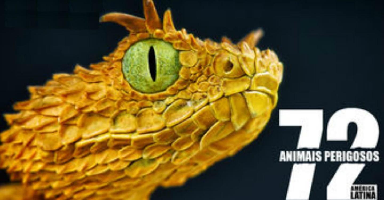 72 Dangerous Animals: Latin America online