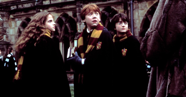 Harry Potter ja salaisuuksien kammio backdrop 1