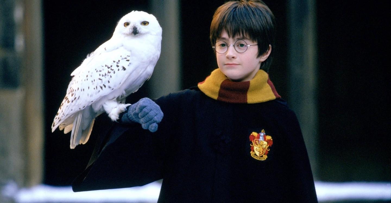 Harry Potter ja viisasten kivi backdrop 1