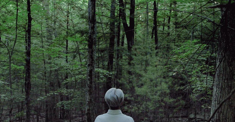 Ryuichi Sakamoto: Coda backdrop 1