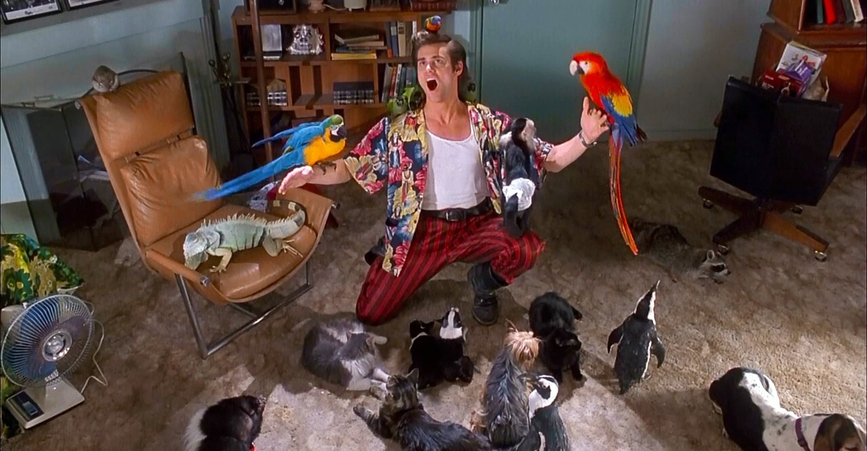 Ace Ventura: Pet Detective backdrop 1