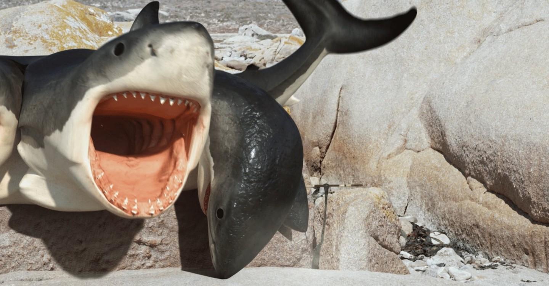 6 Headed Shark Backdrop 1
