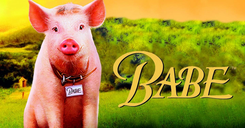 schweinchen babe stream