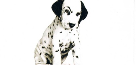 102 Dalmatians Streaming Where To Watch Online