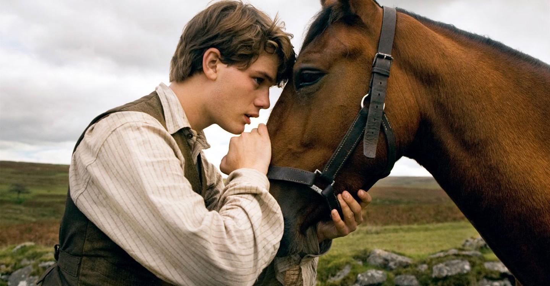 War Horse backdrop 1
