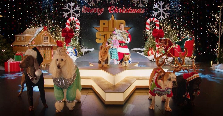 Wuff Star Weihnachten backdrop 1
