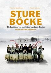 Sture Böcke