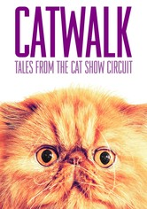 Catwalk: Tales from the Catshow Circuit