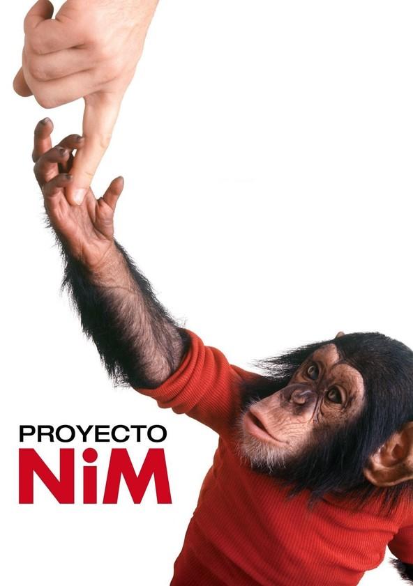 Proyecto Nim poster