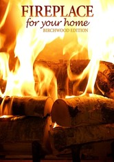 Fireplace for Your Home: Birchwood Edition