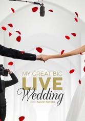 My Great Big Live Wedding with David Tutera