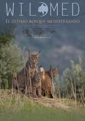 WildMed The Last Mediterranean Forest