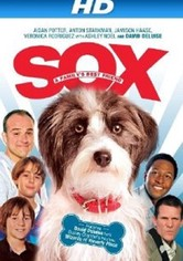 Sox: A Familys Best Friend