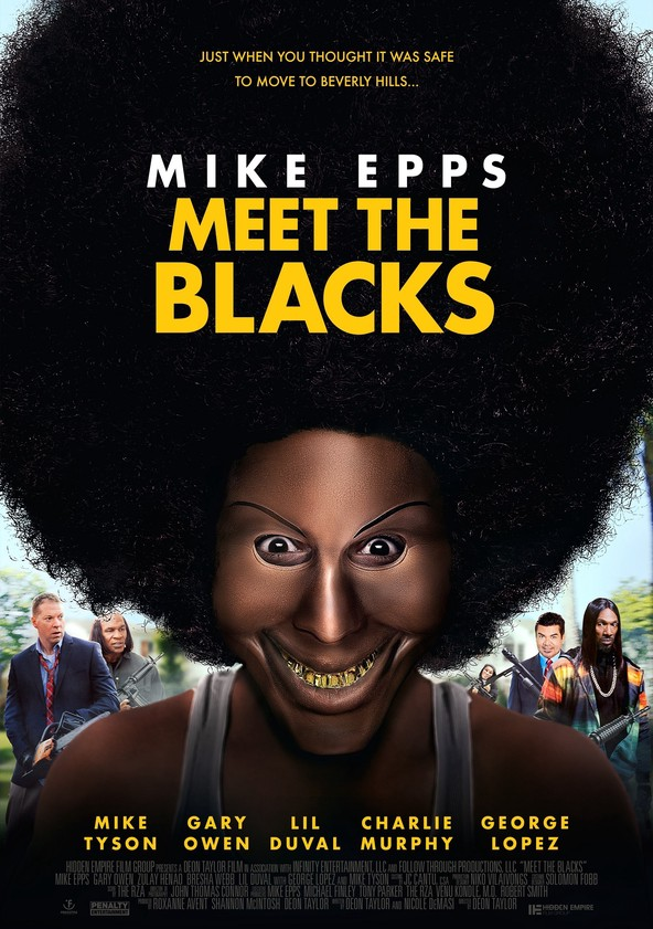 Meet the Blacks poster