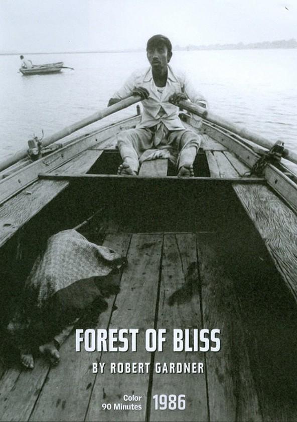 Wald der Glückseligkeit poster