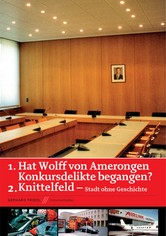 Wolff Von Amerongen: Did He Commit Bancruptcy Offences?