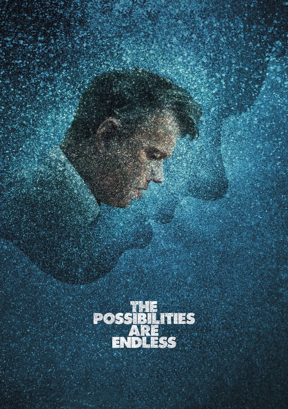 The Possibilities Are Endless poster