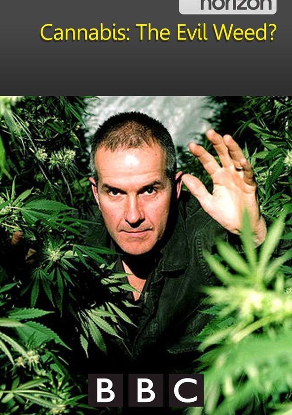 Конопля опасное зелье лирика и марихуана
