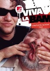 viva la bam download