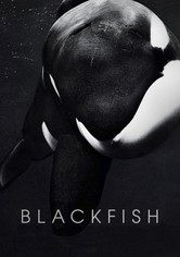 Blackfish - Fúria Animal