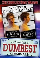 America's Dumbest Criminals Season 1