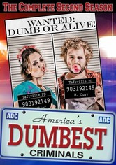 America's Dumbest Criminals Season 2