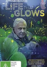 Attenborough's Life That Glows
