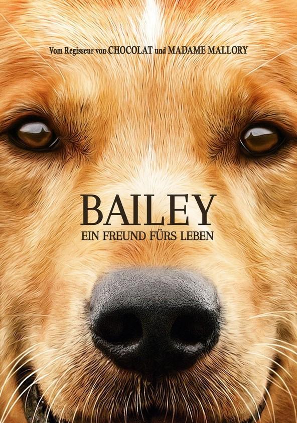 Bailey – Ein Freund fürs Leben poster