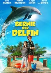 Bernie der Delfin