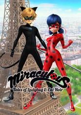 Miraculous: Buburuza și Motan Noir