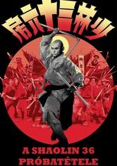A Shaolin 36 próbatétele