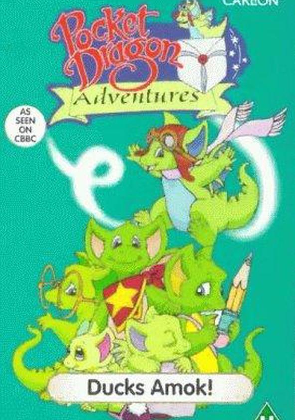 Pocket Dragon Adventures