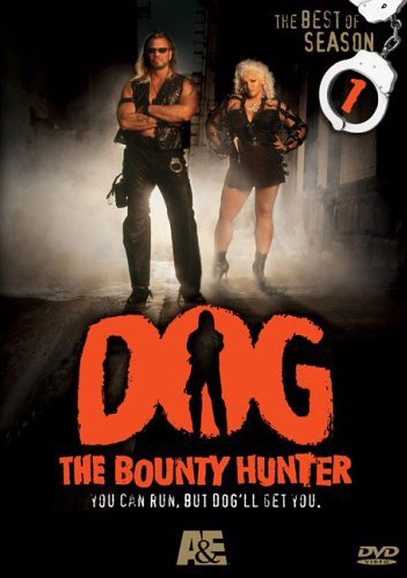 watch the bounty hunter online with english subtitles