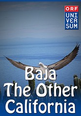 Baja: The Other California