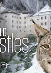 Wild Castles