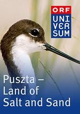 Puszta - Land of Salt and Sand
