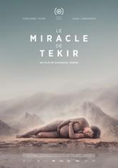 The Miracle of Tekir