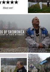 The Fog of Srebrenica