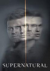 Temporada 15