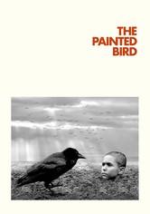 Nabarvené ptáče