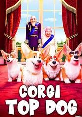 Cai na Real, Corgi