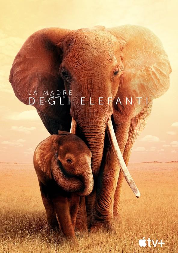 La madre degli elefanti