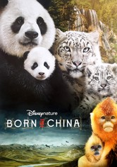 Disneynature: Nacidos en China