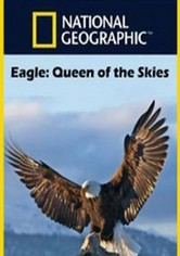 Eagle - Queen of The Skies